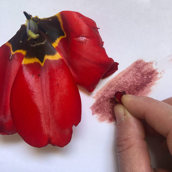 Home Art Supplies: Tulip Leaves