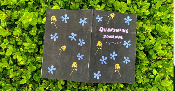 Quarantine Journal, Julie Sharpe