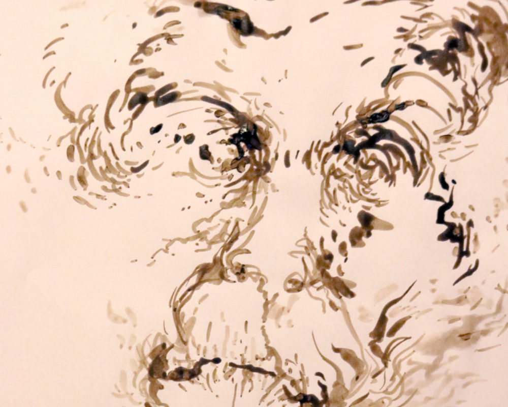 Walnut Ink Drawing