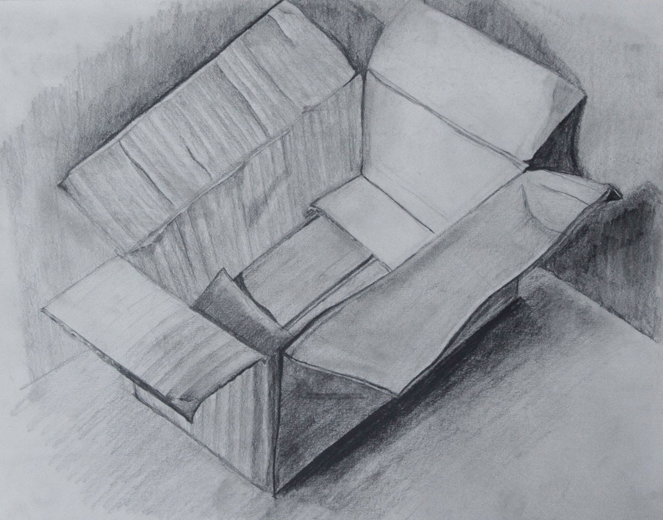 Art School Admissions Portfolio: Pencil Drawing