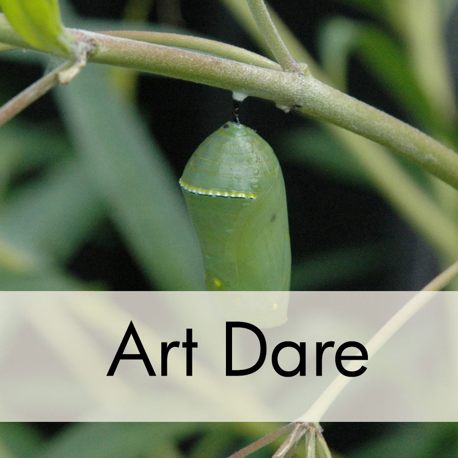 2017 May Art Dare: Metamorphosis
