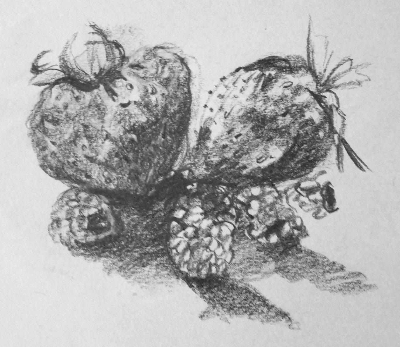 Graphite Drawing, Karas C., USA