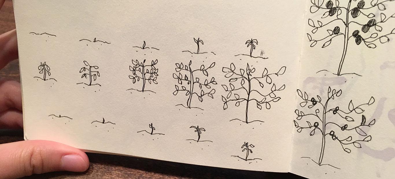Veggie Animation, Alexia Towle