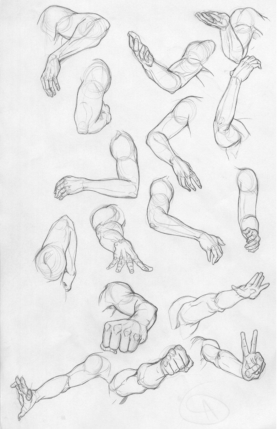 Arm Drawings, Jordan McCracken-Foster