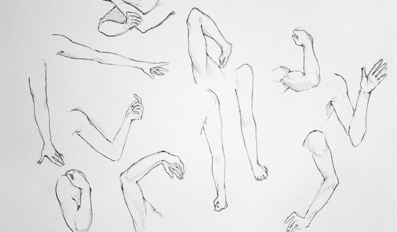 Anatomy Drawing Marathon. Iris Yip