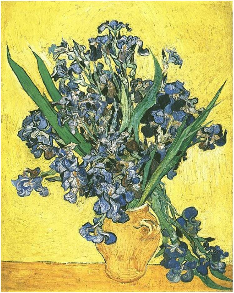 stilllife with Irises