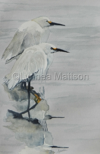 Lynnea Mattson Gallery