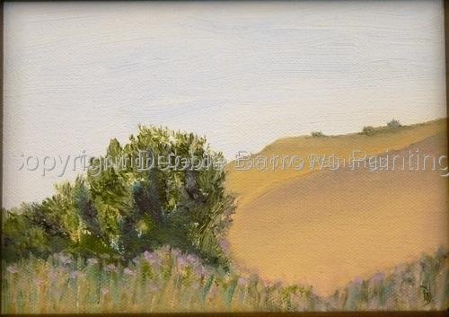 Debbie Barrows Paintings
