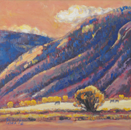 Gina Grundemann, Colorado Landscape Painter
