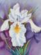 Joan Hartman and Chellie Hartman Inspired Art