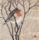 Art of Jenny Moed-Korpela