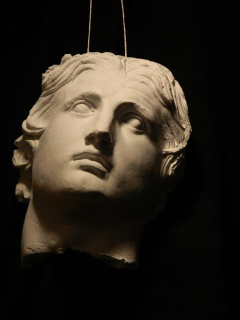4th Century Greek, cast of a head in Adult Progressive Painting