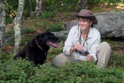 Kathy and Dixie collecting wild Maine blueberries.