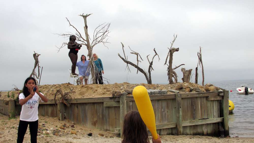 driftwood installation, building art with community
