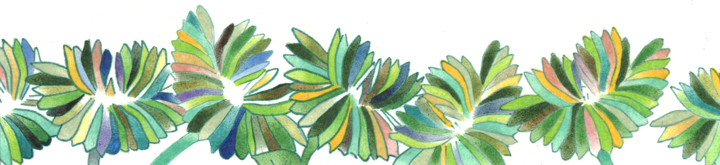 Botanical Illustrations and Detailed-Stylized Drawings