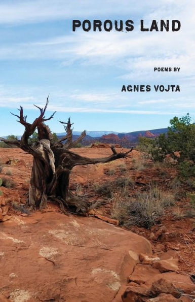 Porous Land_Agnes Vojta