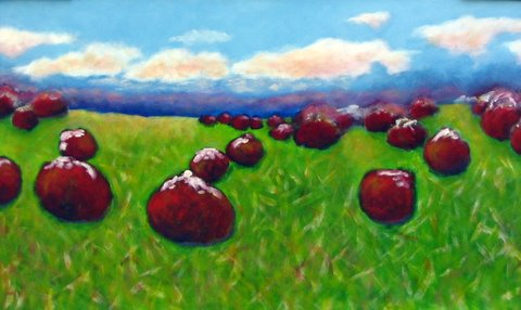 field, strawberries, sky