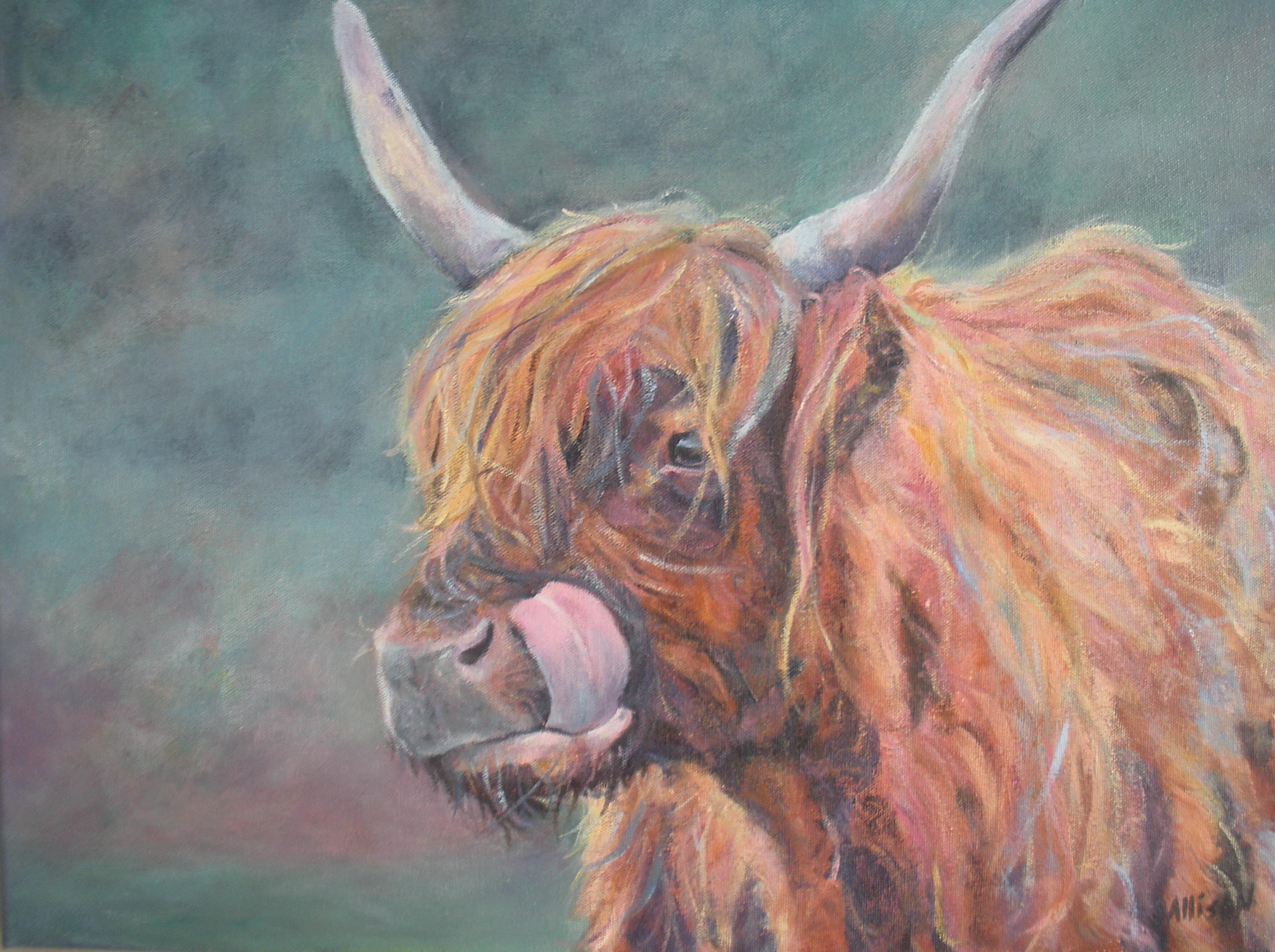 acrylic, highland cow
