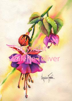 Bleeding Heart Fushia Watercolor Painting by Valerie Toliver
