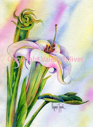 Sacred Datura Watercolor Painting by Valerie Toliver