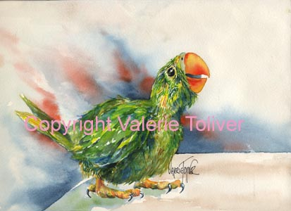 Painting of a baby parrot