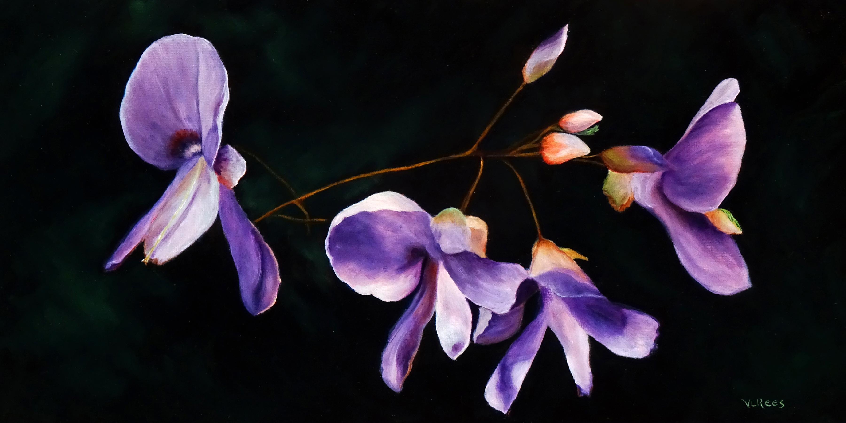 purple wildfloweres