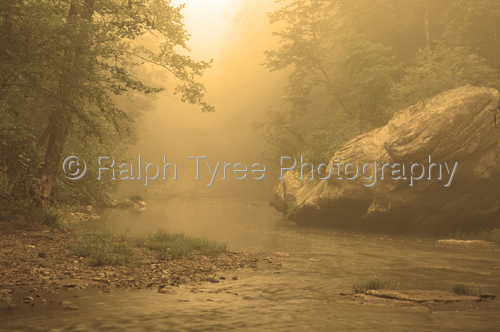 Ralph Tyree Photography