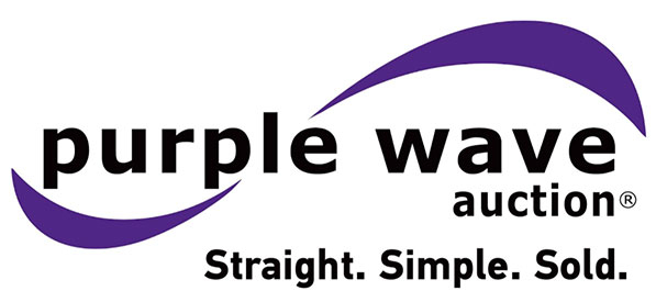 purple wave auction listings