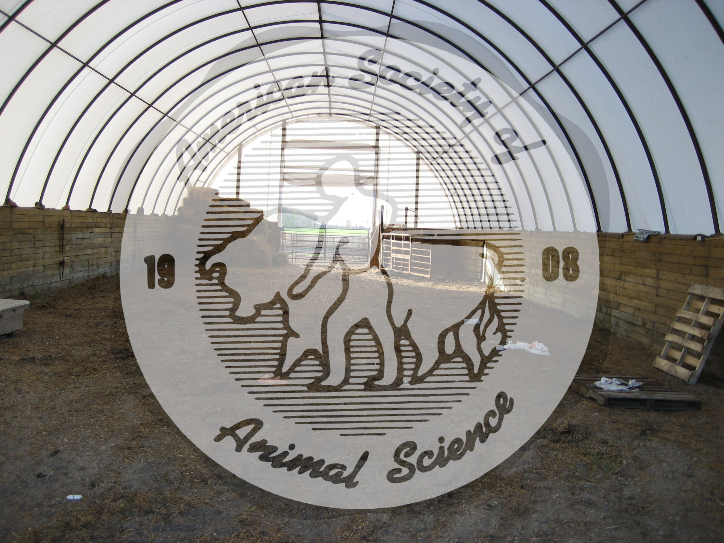 Hoop barns are found on farms and ranches across the Midwest and Plains states.  This hoop barn is located in southeastern North Dakota and is used as a calving shed.  The right-hand side of the hoop barn in this picture is set up as a maternity area for assisting beef cows when dystocia is encountered.