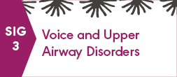 SIG 3, VOICE AND UPPER AIRWAY DISORDERS