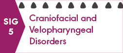SIG 5, CRANIOFACIAL AND VELOPHARYNGEAL DISORDERS