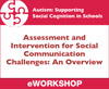 Assessment and Intervention for Social Communication Challenges: An Overview