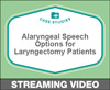 Alaryngeal Speech Options for Laryngectomy Patients