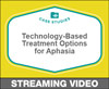 Technology-Based Treatment Options for Aphasia