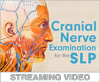 Cranial Nerve Examination for the SLP