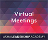 Leadership Academy: Virtual Meetings