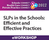 SLPs in the Schools: Efficient and Effective Practices