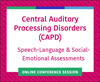 Speech-Language and Social-Emotional Assessments for Kids With CAPDs