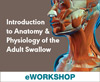 Introduction to Anatomy & Physiology of the Adult Swallow