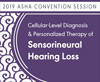 Research Symposium in Hearing: Cellular-Level Diagnosis and Personalized Therapy of Sensorineural Hearing Loss