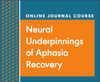 Neural Underpinnings of Aphasia Recovery