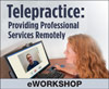 Telepractice: Providing Professional Services Remotely