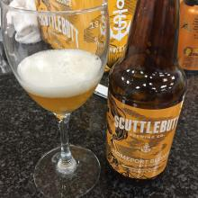 Scuttlebutt Homeport Blonde Review