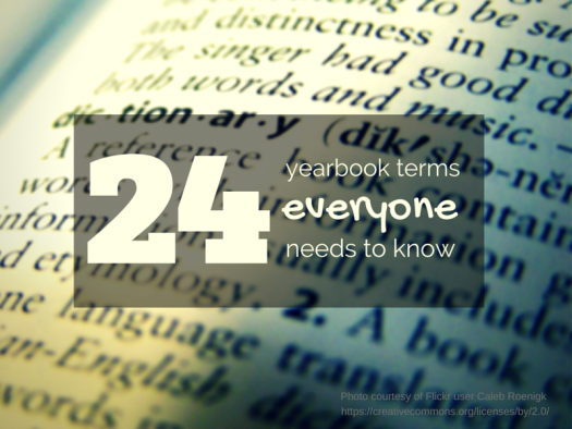 24-terms_header-image