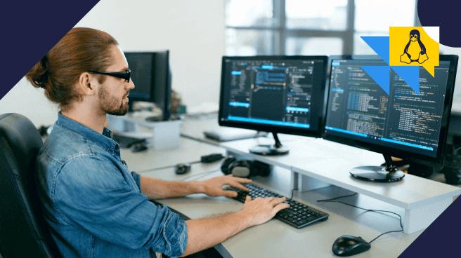 Cat Linux: confira as aplicações e como utilizá-lo
