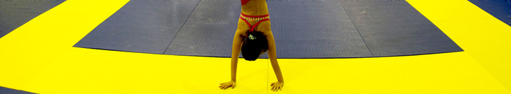 Pw ginastica banner