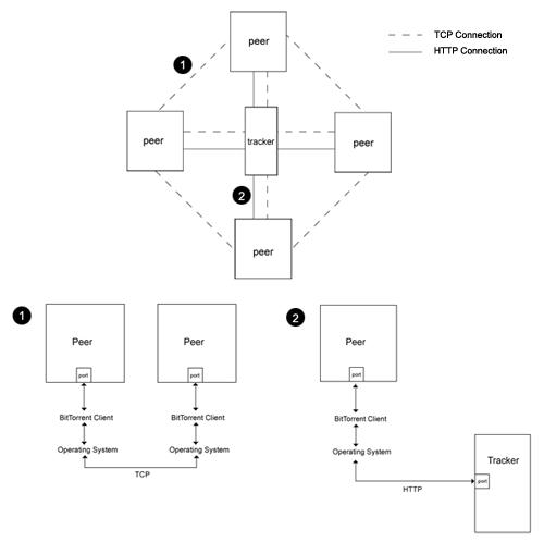 The BitTorrent Protocol | morehawes