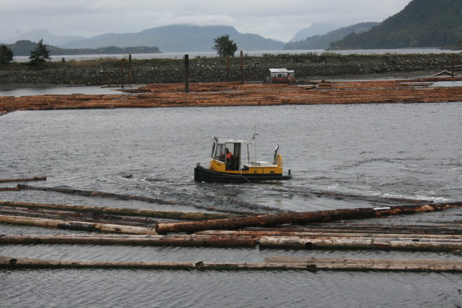 Tug boats moving logs at Kelsey Bay outside Sayward