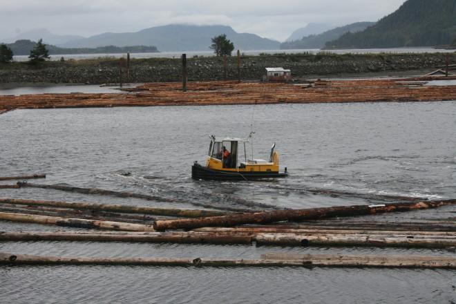 Tug boats moving logs at Kelsey Bay outside Sayward