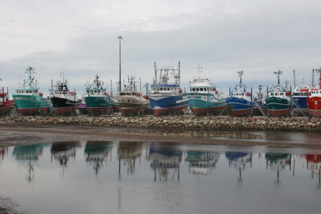 Fising boats at Shipphagan, New Brunswick